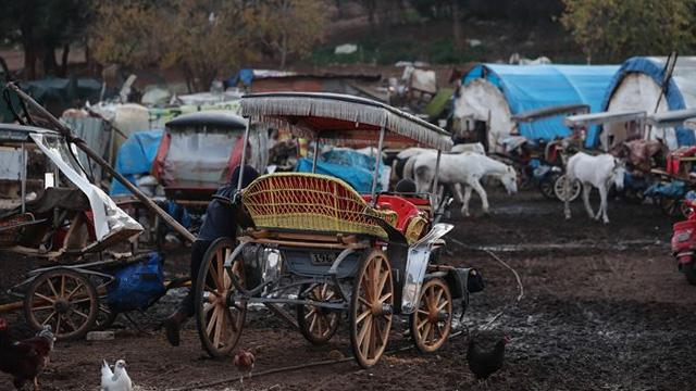 Adalar'daki faytona koşulan atların kaldıkları ahırların içler acısı hali: Yürek sızlatan görüntüler