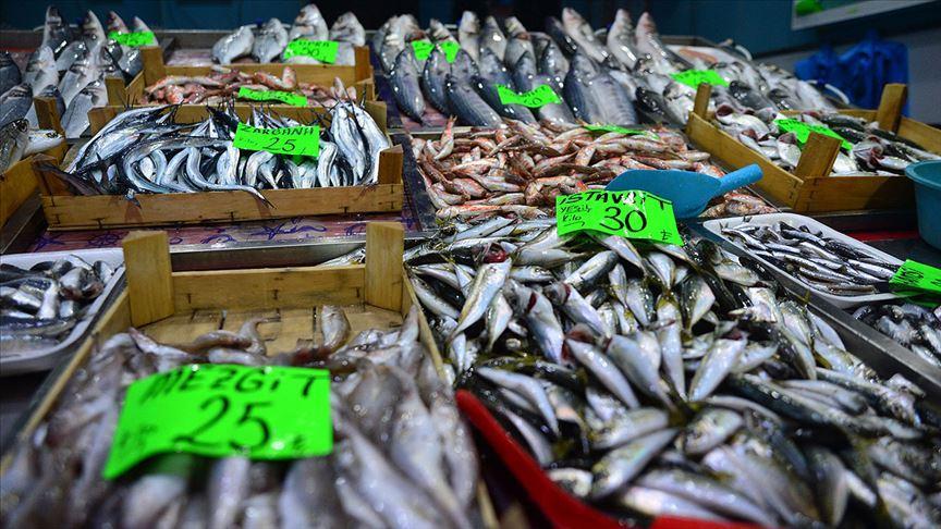 Balıkta uygun fiyat, yüksek arz için 'yasaklara riayet' uyarısı