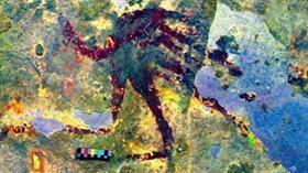Dünyanın en eski sanat eseri Sulawesi'deki bir mağara duvarında keşfedildi