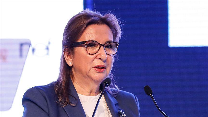 Ticaret Bakanı Pekcan: Eximbank'ın döviz kredilerinde 100 baz puana varan yeni indirimlere gidildi