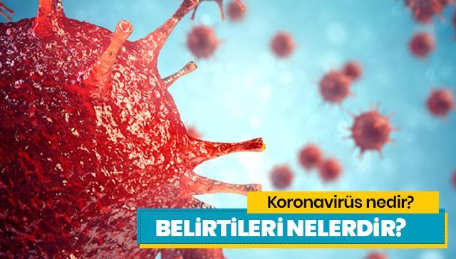 Koronavirüs nedir, belirtileri neler? Koronavirüs Türkiye'ye girdi mi?
