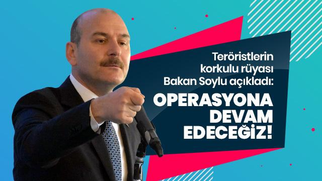 Bakan Soylu: Canlarını çıkarana kadar operasyona devam edeceğiz