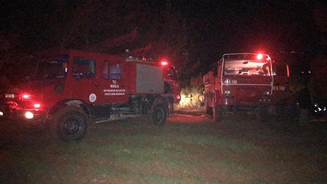 Muğla'da 2 dönüm ormanlık alan yanarak zarar gördü