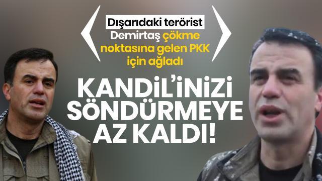 Terör örgütü PKK çökme noktasına geldi! Demirtaş'ın kardeşi böyle ağladı