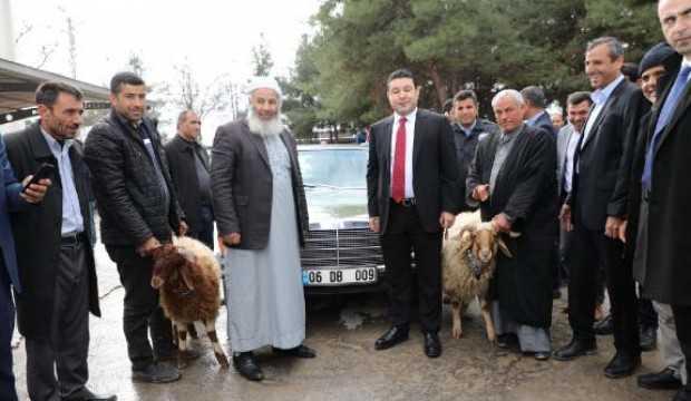 MHP lideri Devlet Bahçeli'nin hediye ettiği klasik otomobil için kurban kestiler