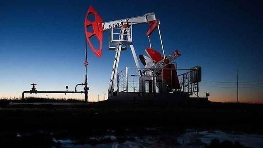 Fiyatlar her gün düşüyor! OPEC+ acil toplantı planlarını gündeminden çıkardı