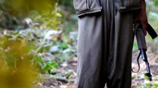 Bir terörist, terör örgütü PKK/YPG'den kaçıp Şanlıurfa'da teslim oldu