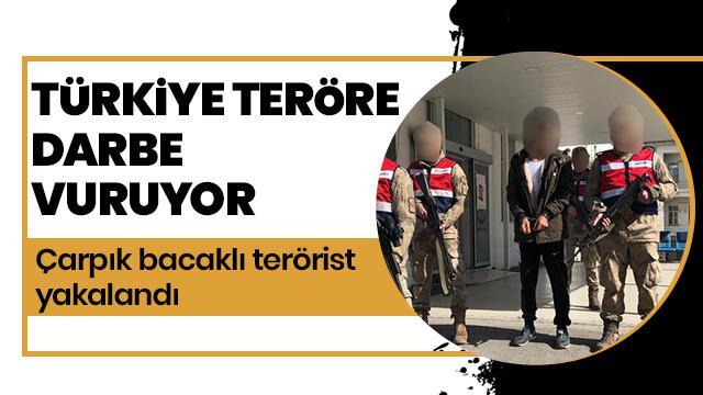 Türkiye teröre darbe vuruyor
