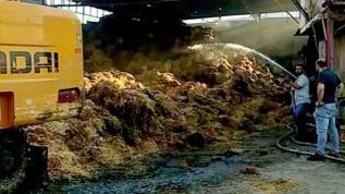 Adana'da besi çiftliğinde yangın: 7 bin balya saman yandı