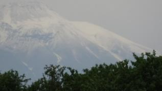 Süphan Dağı temmuz ayında beyaz gelinliğini giydi, büyük ilgi çekti