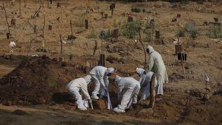 Kovid-19'dan Brezilya'da 1290 kişi öldü