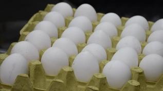 İran'dan şok karar! Yumurta ihracatını durdurdu