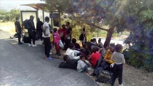 İzmir'de 42 sığınmacı yakalandı