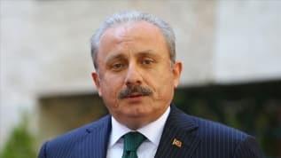 TBMM Başkanı Şentop, Lübnan Meclis Başkanı Nebih Berri ile görüştü