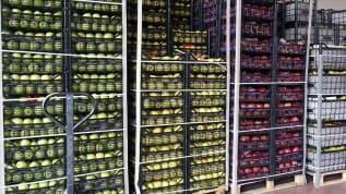 Tarım ürünleri ihracatı 13 milyar doları aştı