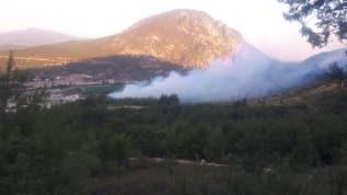Bilecik'te orman yangını: 1,5 hektarlık alan zarar gördü