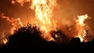 Otluk alanda çıkan yangın nedeniyle 4 site boşaltıldı
