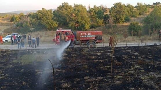 Talat Bilaoğlu: Anız yangını bir doğa katliamıdır
