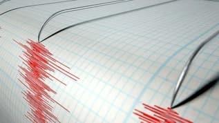 Malatya ve Muş'taki depremler paniğe neden oldu