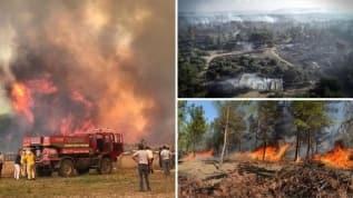 Balıkesir Ayvalık'ta orman yangını: Bazı evler boşaltıldı