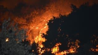 Balıkesir'in Ayvalık ilçesindeki orman yangını kontrol altına alındı