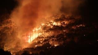 Şeytan Sofrasın'daki orman yangını kontrol altına alındı