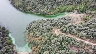 Eyüpsultan'da hayrete düşüren görüntü! Göle kimyasal atık boşalttılar