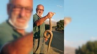 Kendisine saldıran yılanı yakaladı! Boğazından tutarak fotoğraf çekildi
