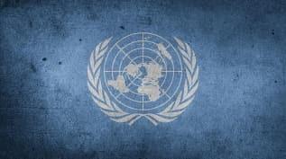 Birleşmiş Milletler, Azerbaycan'a saldıran Ermenistan'ı kınadı