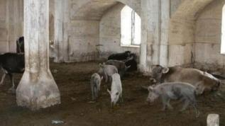 Ermenistan'dan büyük alçaklık! Tarihi camiyi bu hale getirdiler
