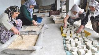 İzmirli öğrencilerin tarım projesi Ödemiş'teki kadınlara ilham oldu