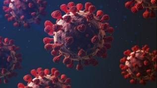 Koronavirüsün yeni bir etkisi daha ortaya çıktı