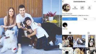 Mustafa Ceceli ile Selin İmer'in  köpekleri Comos ve Oreo Instagram'da!