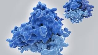 Virüs kadar tehlikeli: Sitokin fırtınası