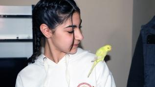 Haberler sayesinde kuşuna kavuştu