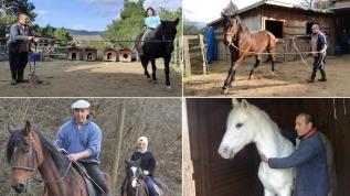 Atlarla yaşıyor, onları yazıyor