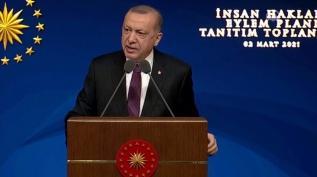 Başkan Erdoğan İnsan Hakları Eylem Planı'nı açıkladı
