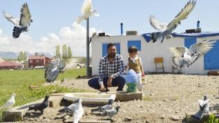 Güvercinleri için arazi aldı 350 bin lira harcadı