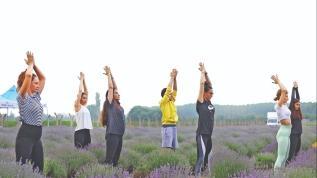 Lavantalar arasında yoga