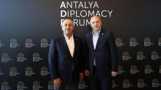 Damka: Balkanlardaki meselelerde Türkiye parlamentosunun etkisi önemli