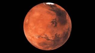 Mars uçuşu öncesi dalak tartışması
