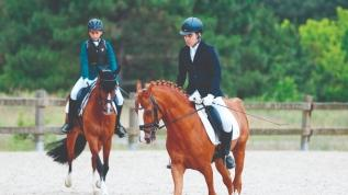 At terbiyesinde yarıştılar