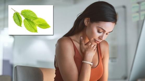 Reflünün ilacı karaağaç çayı
