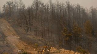 Orman yangınlarında 2 işçinin cansız bedenine ulaşıldı