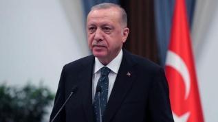 Başkan Erdoğan: 187 yangından 172'si kontrol altında