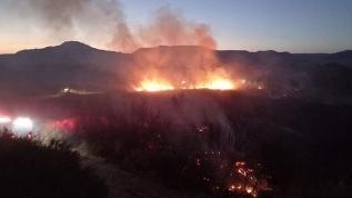 Nallıhan'daki orman yangını söndürüldü