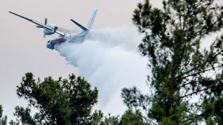 Orman yangınlarına havadan ve karadan müdahale ediliyor