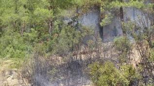 Isparta'da ormanlık alanlara girişler 16 Ağustos'a kadar yasak