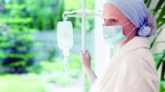 Propolisin kemoterapinin yan etkilerini azalttığı kanıtlandı