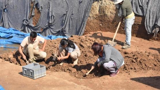 8 bin yıl öncesine ait! Yassıtepe höyüklerindeki kazıda bulundu